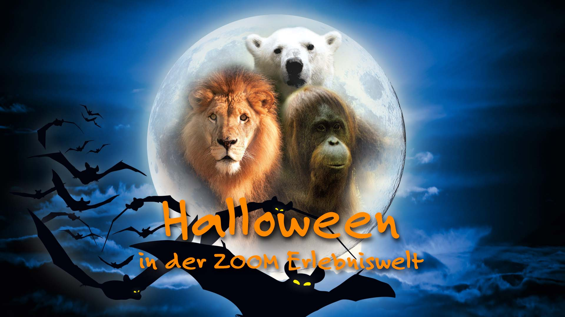 Logo ZOOM Erlebniswelt im Halloween Design