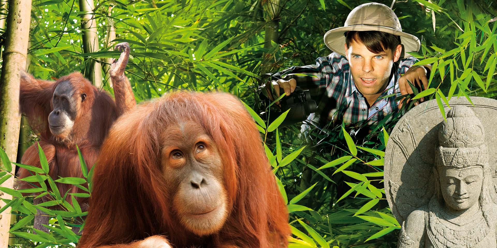 Plakatlayout für Zooprojekt, Marketing Projektmanagement