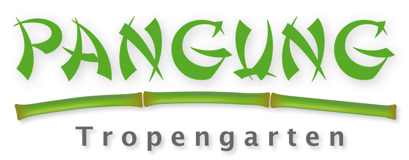 Logoentwicklung für den Pangung Tropengarten