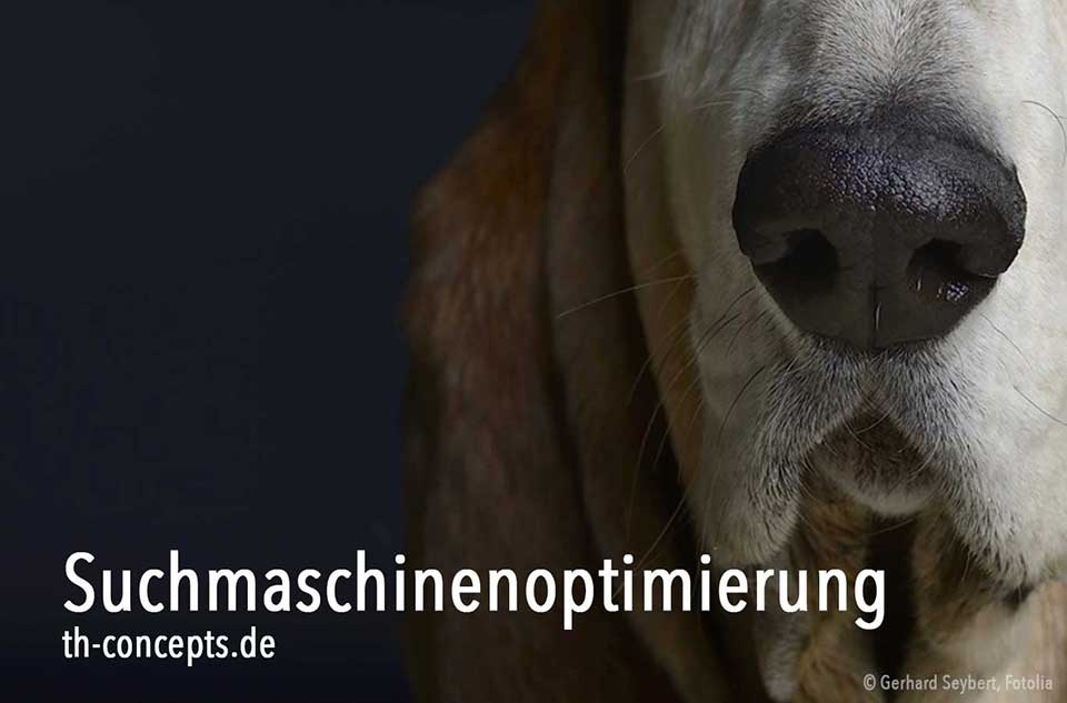 Hundenase symbolisiert gute Suchmaschinenoptimierung